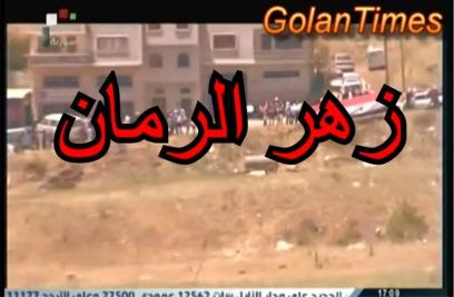 Photo of زهر الرمان حلقة 6 نيسان 2016