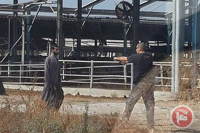 Photo of إصابة أردني برصاص إسرائيلي بعد أن تسلل عبر الحدود