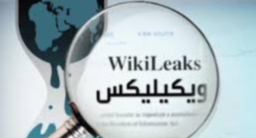 """Photo of """"ويكيليكس"""" تضحك على الاستخبارات الأمريكية"""