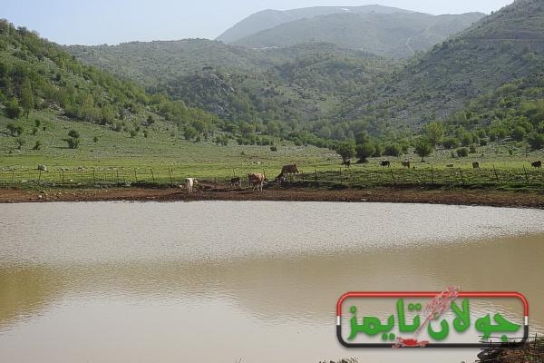 Photo of مسار مشي من بركة مرج المن بجبل الشيخ الى جباثا الزيت