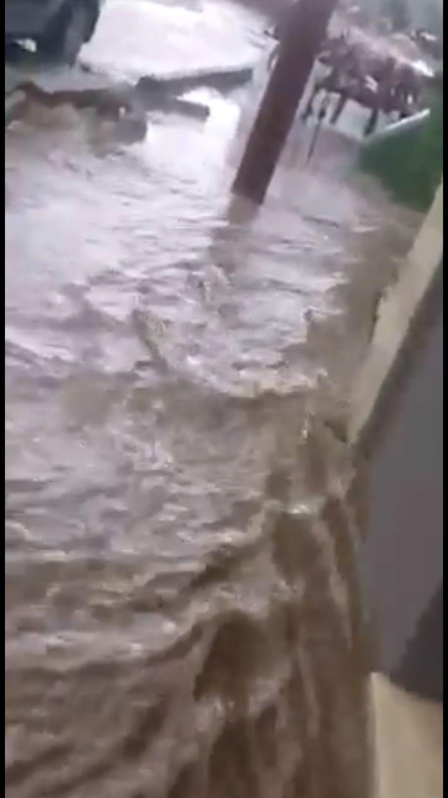 Photo of الامطار تكشف عيوب الصرف الصحي في مسعدة