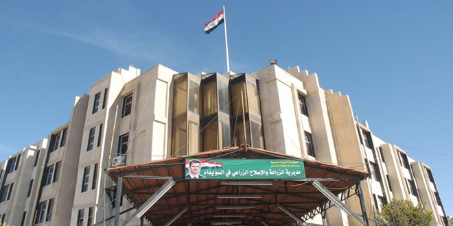 Photo of الحكومة تتجه للحماية الحراجية بالسويداء
