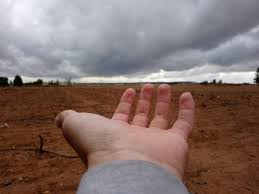 Photo of في ظل استمرار شح الهطولات المطرية خبير زراعي يدعو إلى اجتماع حكومي عاجل لتعديل الخطة الزراعية