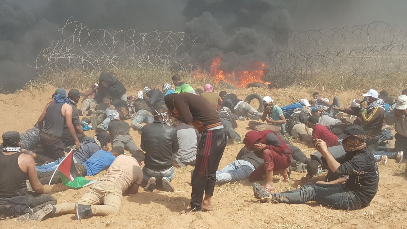 "Photo of ""جمعة الكوشوك""… فلسطين (فيديو+ صور)"
