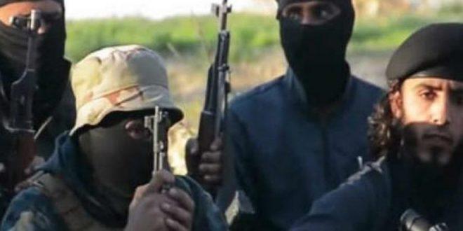 """Photo of المخابرات السورية والعراقية تعتقل قادة الخط الأول لـ""""داعش"""""""