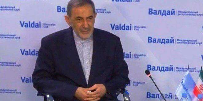 Photo of Velayati: Iran continues to back Syria in its war against terrorism