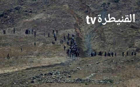 Photo of إرهابيو الجنوب إلى حضن اسرائيل