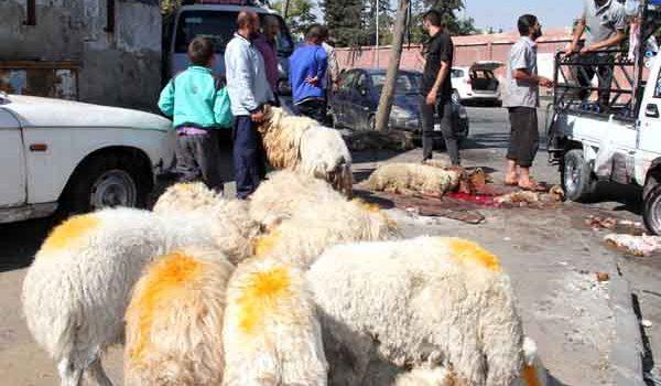 "Photo of 90 ألف ليرة ثمن ""أضحيـة العيد"" بـدمشق"