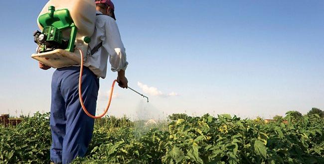 Photo of مبيدات مهربة ومغشوشة تتحالف مع الطقس في ضرب محاصيل طرطوس