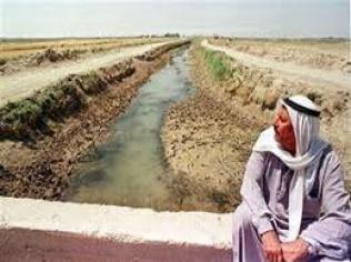 Photo of العراق يفقد نصف مساحاته الزراعية بسبب الجفاف