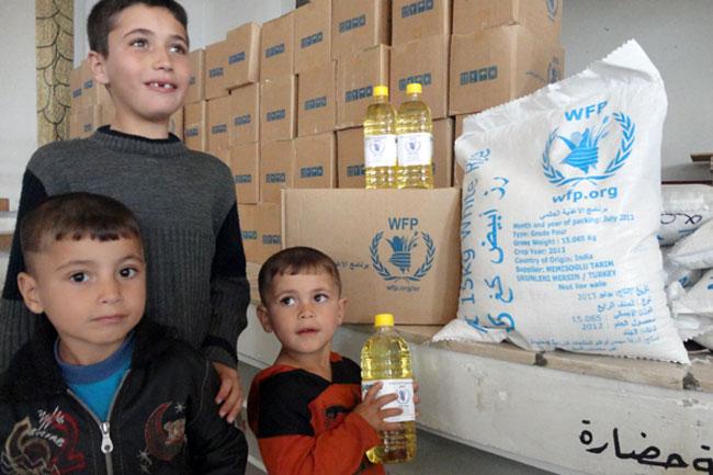 ألمانيا تخصص 186 مليون يورو لمساعدة «السوريين»!