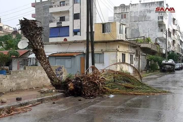 Photo of بالصور- الأضرار الناجمة عن العاصفة المطرية في طرطوس يوم أمس