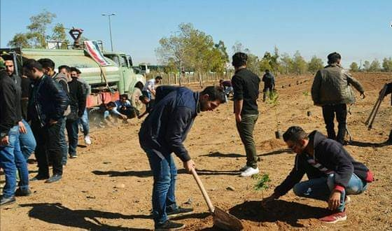 Photo of One thousand trees to be planted on Damascus International Airport Road