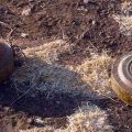 Civilian injured by landmine left behind by Daesh in Hasaka countryside
