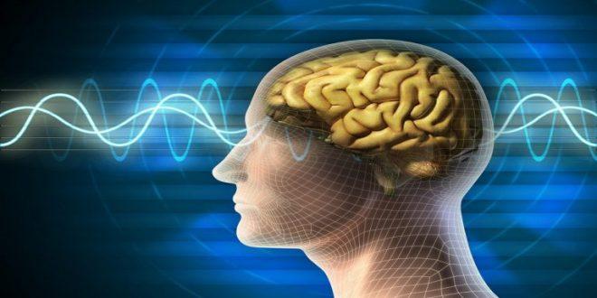 Photo of تقنية جديدة لفك لغز الروح البشرية