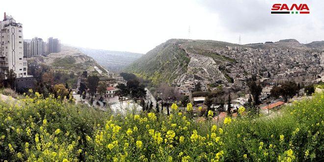 Photo of أذار.. جو بارد وأمطار متفرقة