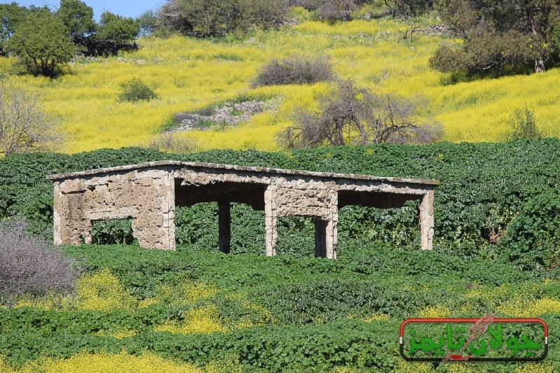 Photo of قرية سير ذياب المدمرة