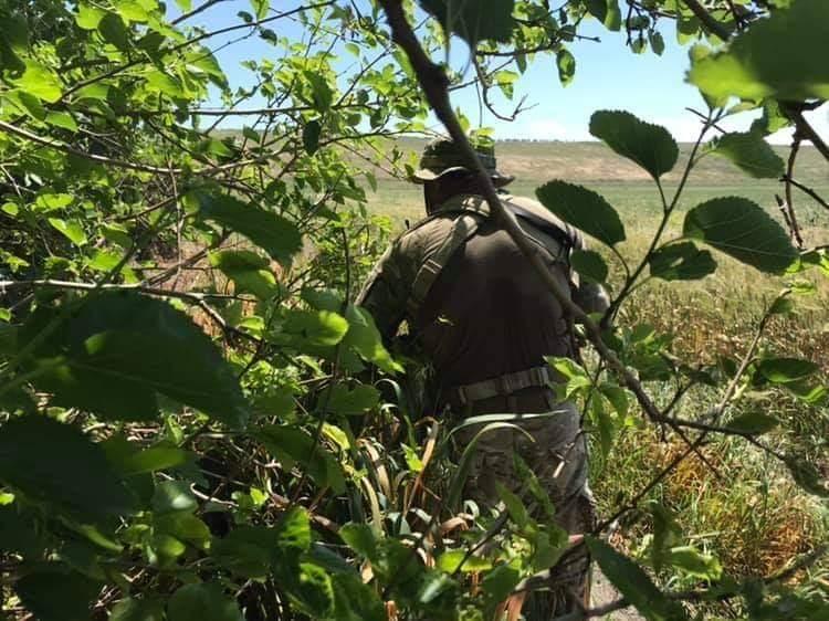 Photo of الجيش يحبط محاولة تسلل إرهابيين من محور أبو الضهور