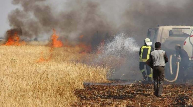 Photo of جنود الاحتلال التركي يضرمون النيران في محاصيل الحسكة
