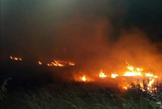 Photo of Large fires extinguished in al-Safawi village in Hama