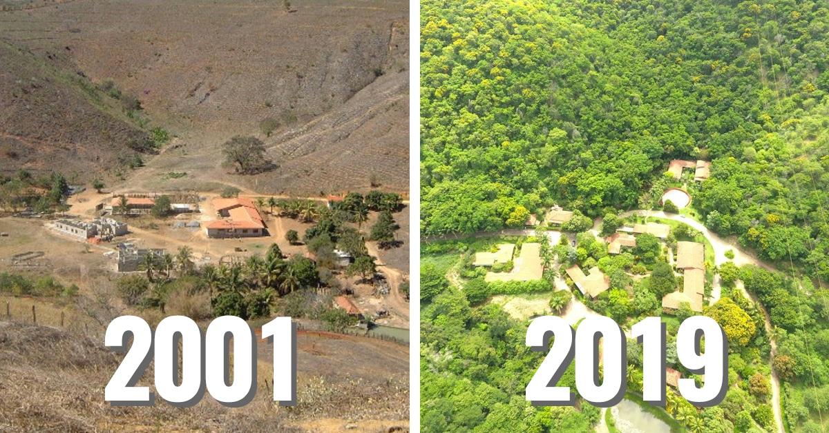 Photo of (من2001 حتى 2019) .. زوجان أعادا الحياة لصحراء في البرازيل فأصبحت غابة خضراء
