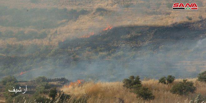 Photo of إخماد حريق طال عشرات الدونمات قرب سد الروم شرق السويداء