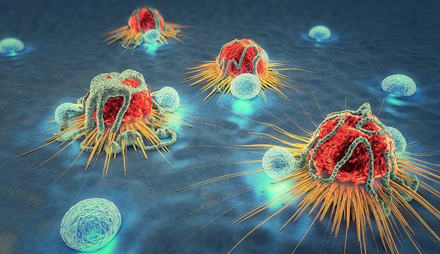 "Photo of ما هي ""المادة السحرية"" التي تقي من مرض السرطان!"