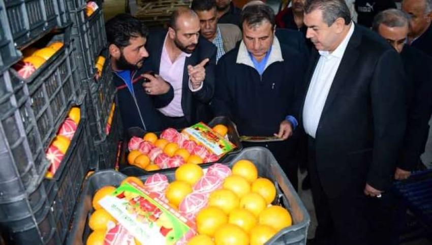 Photo of لدعم المزارعين.. نقل مجاني لتسويق الحمضيات
