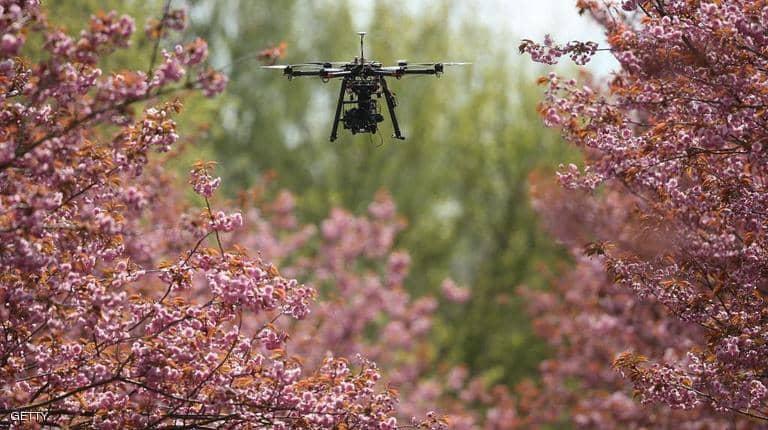 Photo of علماء يطلقون مبادرة لزراعة مليار شجرة بالطائرات المسيّرة