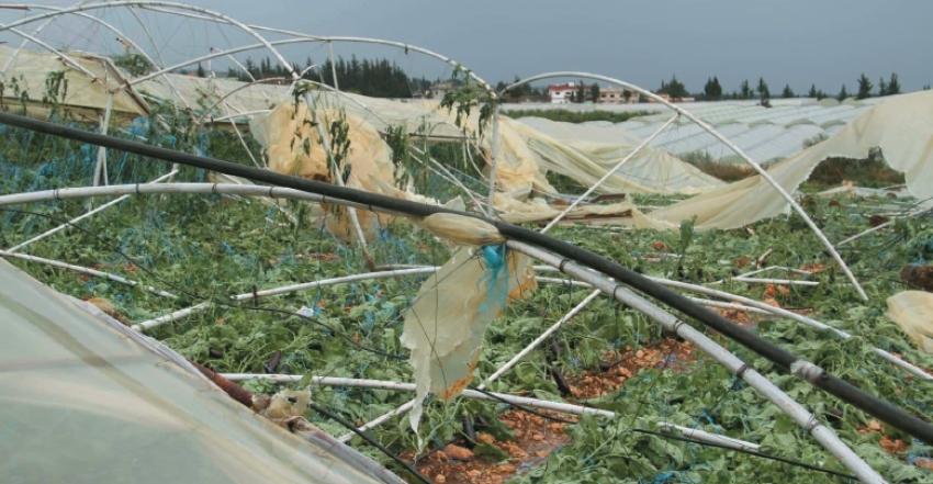 Photo of بسبب العواصف.. خسائر فادحة بالزراعات المحمية بطرطوس