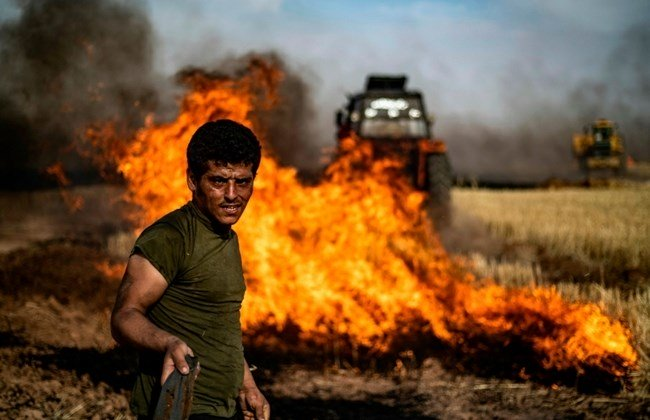 Photo of Pro-Turkish mercenaries set fire to wheat and barley fields in Hasaka countryside