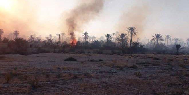 النيران تلتهم 150 هكتاراً من بساتين واحة تدمر