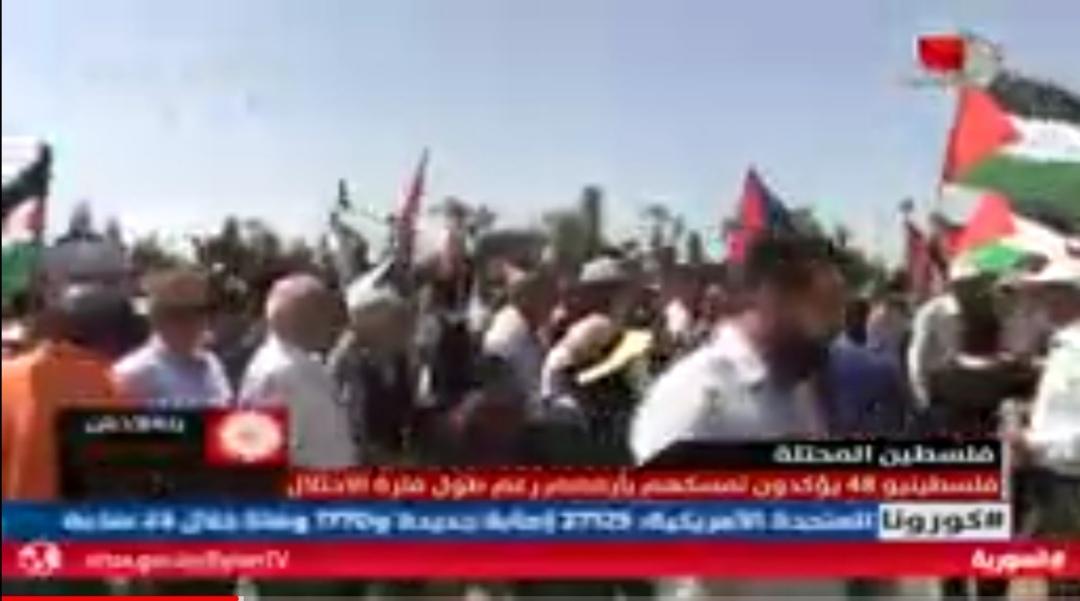 Photo of تقرير التلفزيون السوري- فلسطينو ٤٨ يؤكدون تمسكهم بأرضهم رغم طول فترة الاحتلال