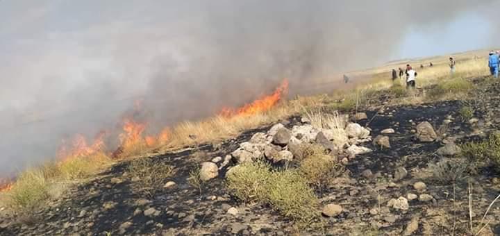 Photo of السيطرة على حريق بالقرب من بلدة الناصرة بريف تلكلخ