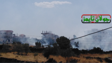 Photo of احتراق بستان في مدينة شهبا بمحافظة السويداء