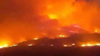 Photo of حريق كبير يلتهم أراضي المنيذرة و يمتد إلى ريف الجنوبي الشرقي للسويداء