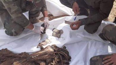 Photo of رفع رفاة 42 شهيداً من مقبرة جماعية في الرقة