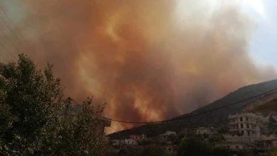 Photo of حريق كبير يلتهم أكبر محمية طبيعة في سوريا – صور