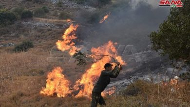 Photo of One-week fires of Hama countryside cause losses estimated at thousands of acres