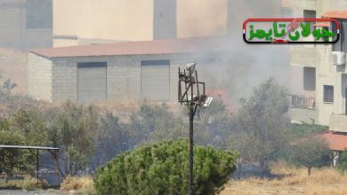 Photo of حريق في بستان أشجار في مدينة شهبا ( فيديو)