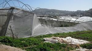 Photo of التعويض على 589 مزارعاً متضرراً في ريف دمشق وطرطوس وحمص