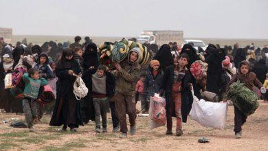 Photo of مصادر…أسر سوريا تستعد لمغادرة «مخيم الهول»