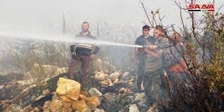 Photo of 93 حريق في اللاذقية حتى الآن واندلاع حريق جديد في قرية قرن حلية بريف جبلة