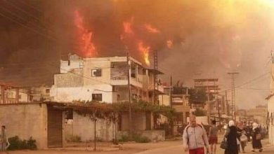 Photo of Fires break out in Home and Tartous, firefighting and civil defense teams deal with it