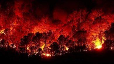 Photo of لأول مرة بتاريخ سوريا اندلاع عدد كبير من الحرائق بيوم واحد