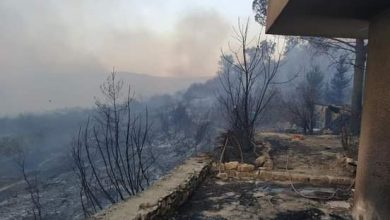 Photo of السيطرة على حريق ضخم فجر اليوم قرب «غابة النبي متى» بريف طرطوس