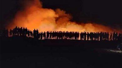 Photo of القبض على 14 شخصاً من المشتبه بتورطهم بإشعال حرائق طرطوس