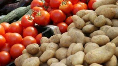 Photo of البندورة والبطاطا ترتفع إلى ألف ليرة للكيلو!