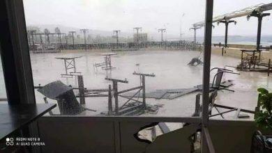 Photo of تنين بحري يضرب شواطئ طرطوس (صور)
