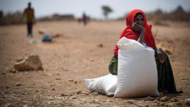 Photo of الأمم المتحدة: نصف اليمنيين يعانون من انعدام الغذاء